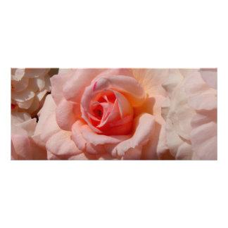 pink rose personalised rack card