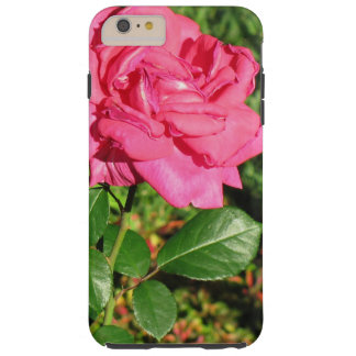 Pink Rose phone cases