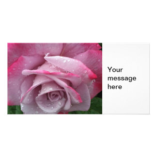 Pink Rose Photocard Custom Photo Card