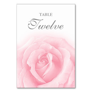 Pink Rose Romance Wedding Table Number 12 Card Table Cards