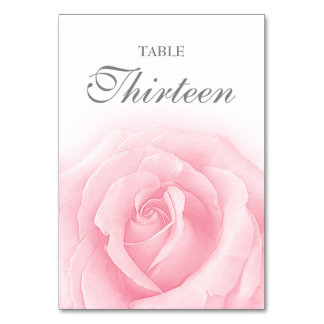 Pink Rose Romance Wedding Table Number 13 Card Table Cards