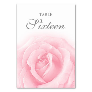 Pink Rose Romance Wedding Table Number 16 Card Table Card