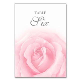 Pink Rose Romance Wedding Table Number 6 Table Cards