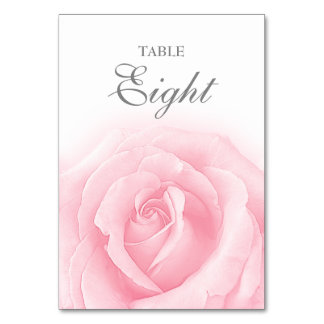 Pink Rose Romance Wedding Table Number 8 Card Table Card