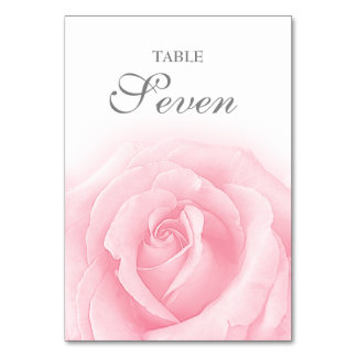 Pink Rose Romance Wedding Table Numbers Table Card