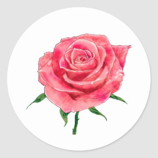 Pink Rose Round Sticker
