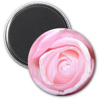 Pink Rose, S Cyr 6 Cm Round Magnet