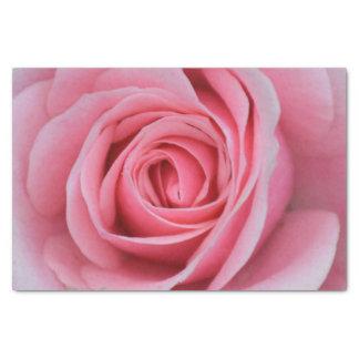 Pink Rose Tissue Paper