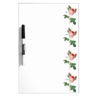 Pink rose vintage botanical illustration dry erase board