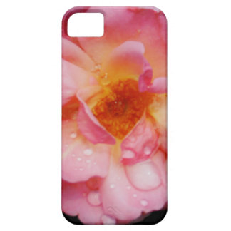Pink Rose w Dew Drops Black Background iPhone 5 Cover