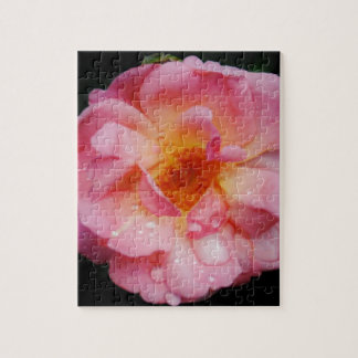 Pink Rose w Dew Drops Black Background Puzzles