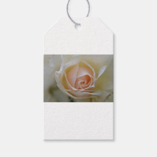 pink rose wedding favours gift tags