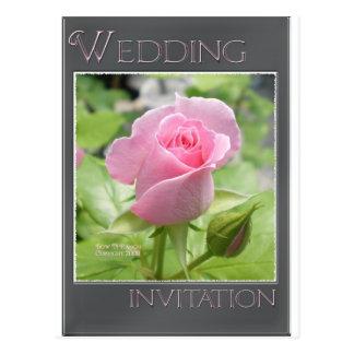 Pink Rose Wedding Invitation Postcard
