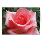 Pink Rose with Dew Note Card