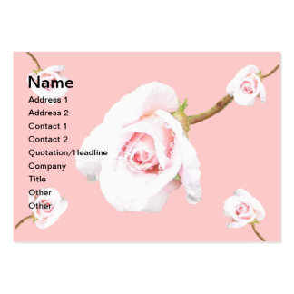 Pink Rose with raindrops Pack Of Chubby Business Cards