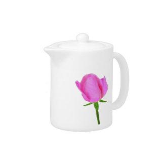 Pink Rose with Tea Time Haiku