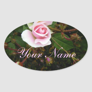Pink Rosebud Oval Sticker
