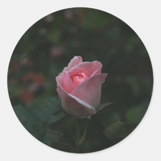 Pink rosebud round sticker