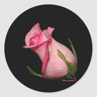 Pink Rosebud (Tilted) Classic Round Sticker