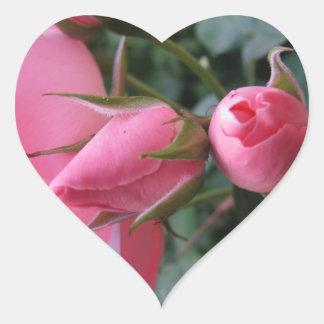 Pink rosebuds heart sticker