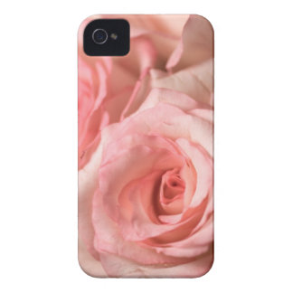 Pink Roses iPhone 4 Cover