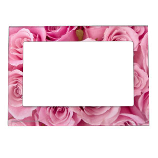 Pink Roses Magnetic Photo Frames