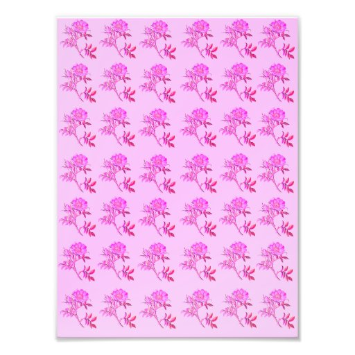 Pink Roses pattern Art Photo