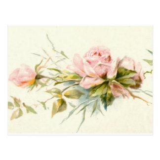 Pink Roses Vintage Bouquet Postcard