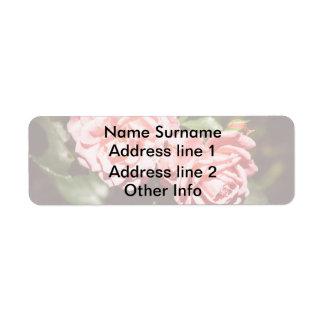 Pink Roses, Vintage Filter Return Address Label