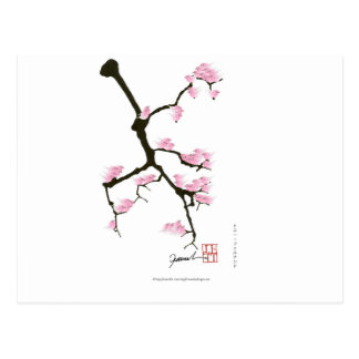 pink sakura and birds, tony fernandes postcard