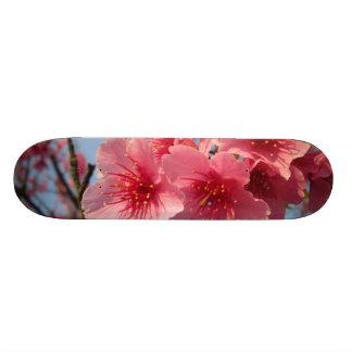 Pink Sakura Cherry Custom Skate Board