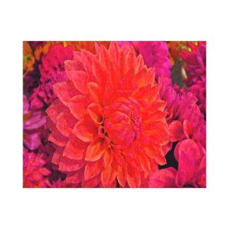 Pink/Salmon and lavender dahlia's Stretched Canvas Print