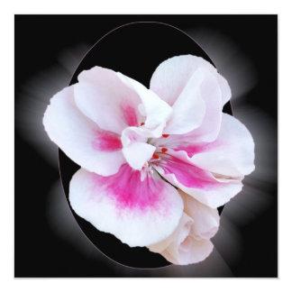 Pink Shades Card