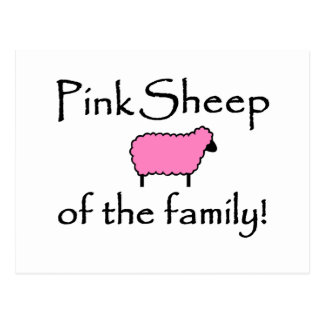 Pink Sheep of the Family Postcard