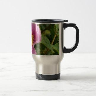 Pink Shrub Rose Blossom Coffee Mugs