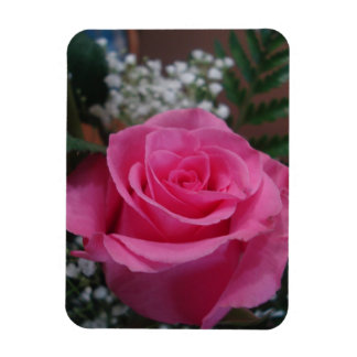 Pink single stem rose magnet