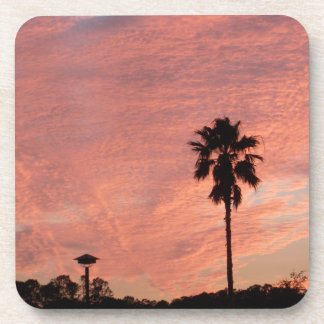 Pink Skies & Palm Tree Coasters