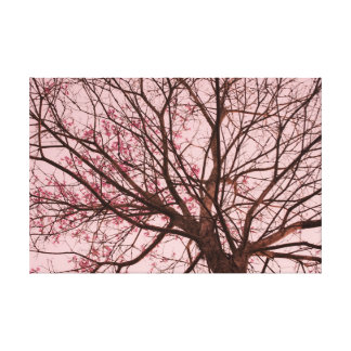 Pink Sky and Tree Branches Stretched Canvas Print