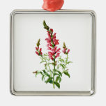 Pink Snapdragon Drawn From Nature Silver-Colored Square Decoration
