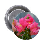 Pink Snapdragons Buttons