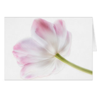Pink Solitaire Note Card