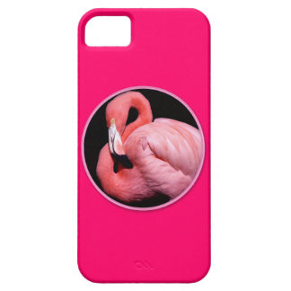 Pink South Florida Flamingo Waterbird Case For The iPhone 5