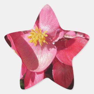 Pink Sparkle Star Sticker