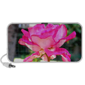Pink! iPod Speakers