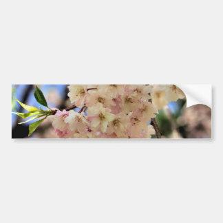Pink Spring Blossoms Flower Bumper Sticker