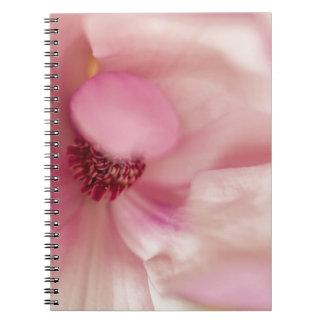 Pink Spring Magnolia Blossom Notebooks