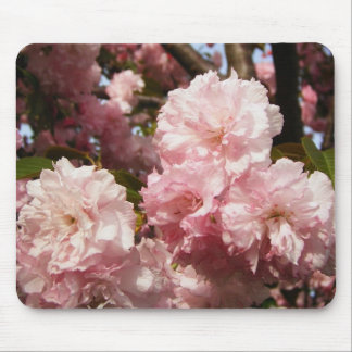 Pink Spring Tree Flowers Mouse Mat