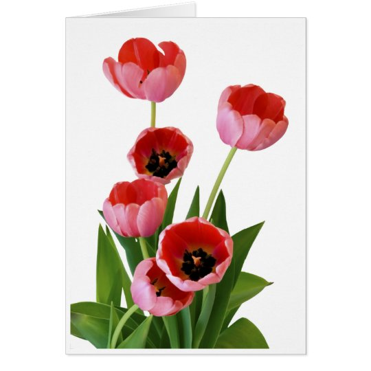 Pink Spring Tulip Bouquet Photograph Card