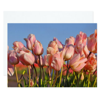 Pink spring tulips card