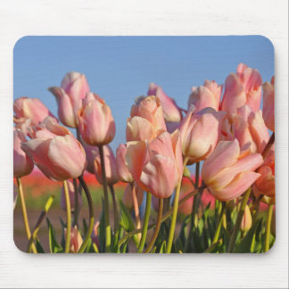 Pink spring tulips mouse mat